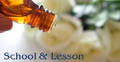School&Lesson